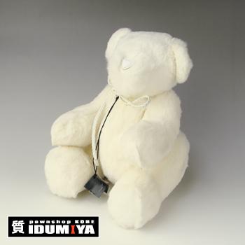 100122G.bear601